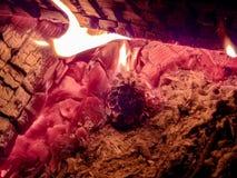 Pinecone в огне Стоковое Фото
