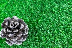 Pinecone на траве Стоковое Изображение
