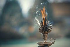 Pinecone ardiendo Imagen de archivo libre de regalías