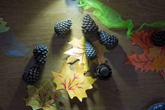 Pinecone caido en el piso Cono del pino con la rama caida en la tierra cono caido del pino que se sienta en la cama del pino inne Imagenes de archivo