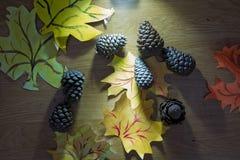 Pinecone caido en el piso Cono del pino con la rama caida en la tierra cono caido del pino que se sienta en la cama del pino inne Fotos de archivo