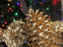 Pinecone with christmas lights bokeh background Royalty Free Stock Image