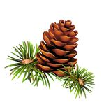 Pinecone Christmas trees Royalty Free Stock Photos