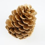 Pinecone d'or Décoration d'or de Noël D'isolement sur le fond blanc photos libres de droits