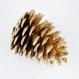 Pinecone d'or Décoration d'or de Noël D'isolement sur le fond blanc photo stock