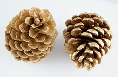 Pinecone d'or Décoration d'or de Noël D'isolement sur le fond blanc image stock