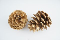 Pinecone d'or Décoration d'or de Noël D'isolement sur le fond blanc images libres de droits