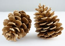 Pinecone d'or Décoration d'or de Noël D'isolement sur le fond blanc photo libre de droits