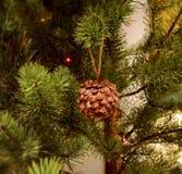 Pinecone d'or sur des branches d'un fourrure-arbre Fond de célébration ` S de nouvelle année et Noël Image libre de droits