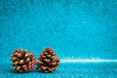 Pinecone en fondo chispeante Fotos de archivo libres de regalías