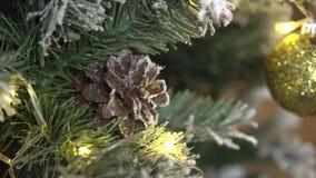 Pinecone et boule de Noël accrochant sur l'arbre de sapin clips vidéos