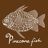 Pinecone fish Royalty Free Stock Images