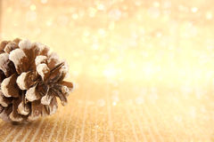 Pinecone on golden shiny background with copy space for text Royalty Free Stock Photography