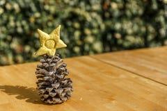 Pinecone na drewnianym stole na pogodnym popołudniu Obrazy Royalty Free