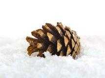 pinecone śnieg Zdjęcie Stock