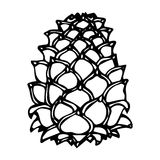 Pinecone Pine Lump Isolated On a White Background Doodle Cartoon Hand Drawn Sketch Vector. Stock Photos