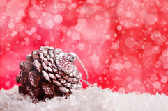 Pinecone and red background Royalty Free Stock Images