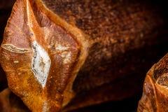 Pinecone scale. Closeup of a Ponderosa pine (Pinus ponderosa) pinecone scale Stock Photography