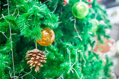 Pinecone and Shatterproof ball ornament  on Christmas Tree Royalty Free Stock Photo