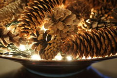 Pinecone skärm med vita ljus Royaltyfri Bild