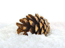 Pinecone in snow Stock Photo