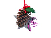 Pinecone with star Royalty Free Stock Image