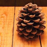 Pinecone on wooden board Stock Photo