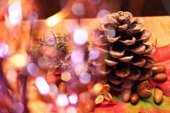 Pinecone on wooden board Stock Photography