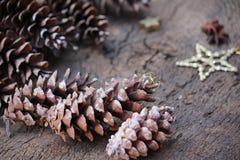 Pinecone y la Navidad de la estrella del brillo Imagen de archivo libre de regalías