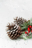 Pinecones σε μια σκηνή χειμερινών Χριστουγέννων κάθετος διάστημα αντιγράφων Στοκ Φωτογραφία