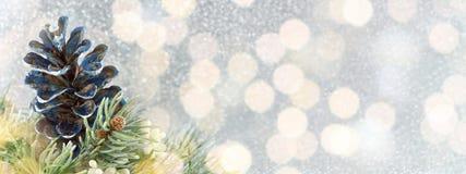 Pinecones и ель на сверкная предпосылке Стоковая Фотография
