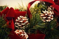 Pinecones рождества Стоковые Фотографии RF