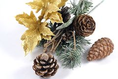 Pinecones. Close up of winter items Royalty Free Stock Photography