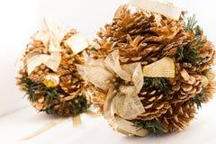 Pinecones del invierno brillantes fotos de archivo