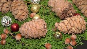 Pinecones e bagattelle Rotationg sui rami di albero dell'abete Priorità bassa di Cristmas video d archivio
