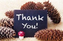 Pinecones e o quadro com as palavras agradecem-lhe Foto de Stock Royalty Free