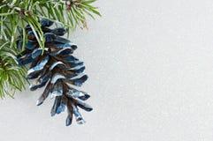Pinecones ed albero di abete su fondo scintillante Immagini Stock Libere da Diritti