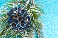 Pinecones ed albero di abete su fondo scintillante Immagine Stock Libera da Diritti