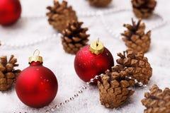 Pinecones en el piso Imagen de archivo libre de regalías