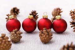 Pinecones en el piso Fotografía de archivo libre de regalías