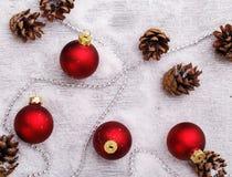 Pinecones en el piso Imagen de archivo