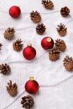 Pinecones en el piso Fotografía de archivo