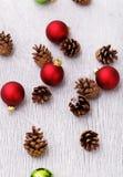 Pinecones en el piso Foto de archivo libre de regalías