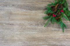 Pinecones en rode bessen op een nette boeg met exemplaarruimte royalty-vrije stock afbeelding