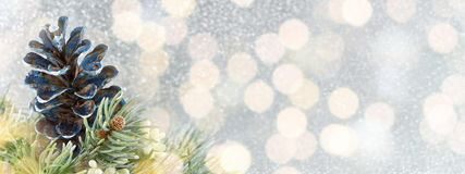 Pinecones et arbre de sapin sur le fond de scintillement Photographie stock