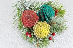 Pinecones i jedlinowy drzewo na iskrzastym tle Obrazy Stock