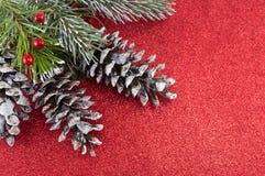 Pinecones i jedlinowy drzewo na iskrzastym tle Obrazy Royalty Free