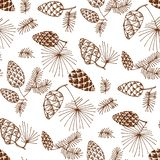 Pinecones koloru bezszwowy wzór ilustracji