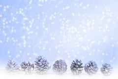 Pinecones no fundo azul com flocos de neve Imagens de Stock
