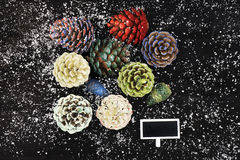 Pinecones painted with different paints Stock Images